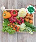 Obsthaus Bio-Snackgemüse-Kiste auf Holzboden mit allerlei Snackgemüse in Bioqualität