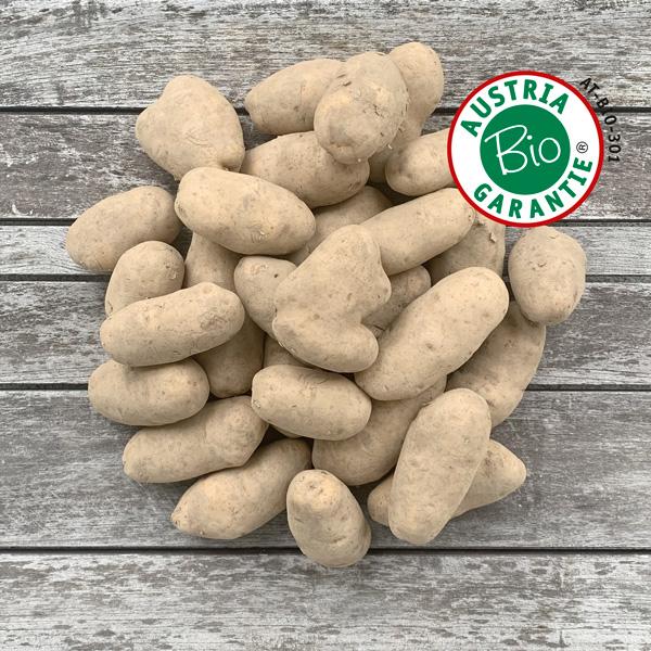 Bio Kartoffeln speckig